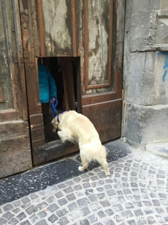 Napoli - Insolita Guida - Palazzo Sanfelice - 05b_new