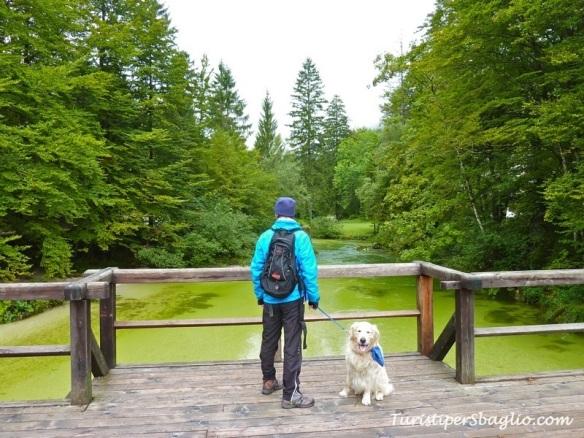 Hiking on Lake Bohinj Slovenia - 08_new