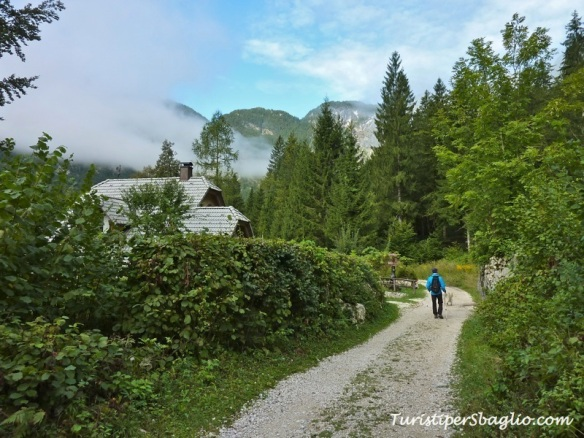 Hiking on Lake Bohinj Slovenia - 12_new